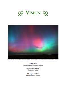 V1 Vision Image