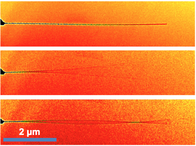 Carbon nanotube nanoelectromechanical resonator vibrating in first two modes.