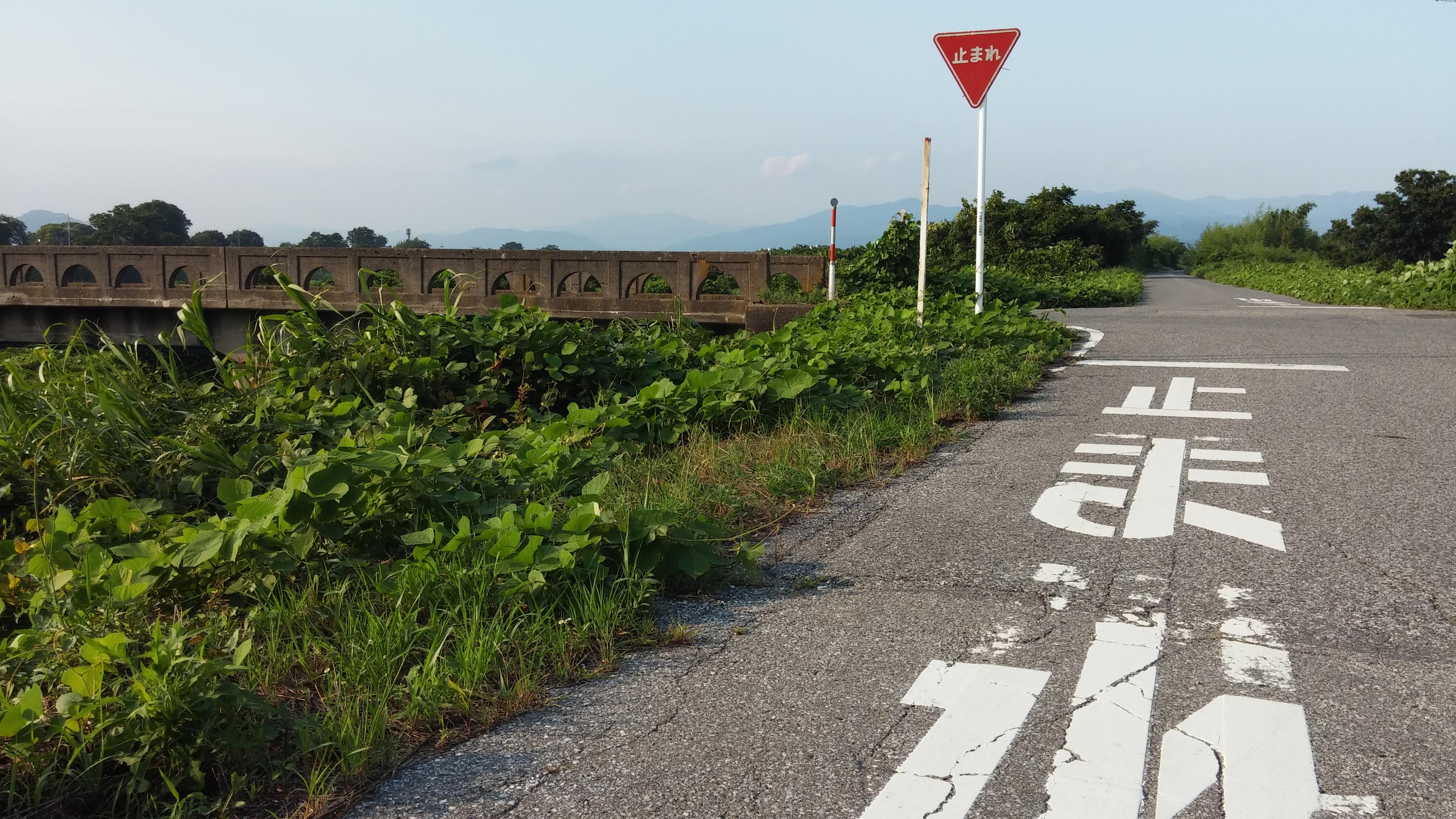 Summer in Kyoto: an Abundance of Belief in Adventure