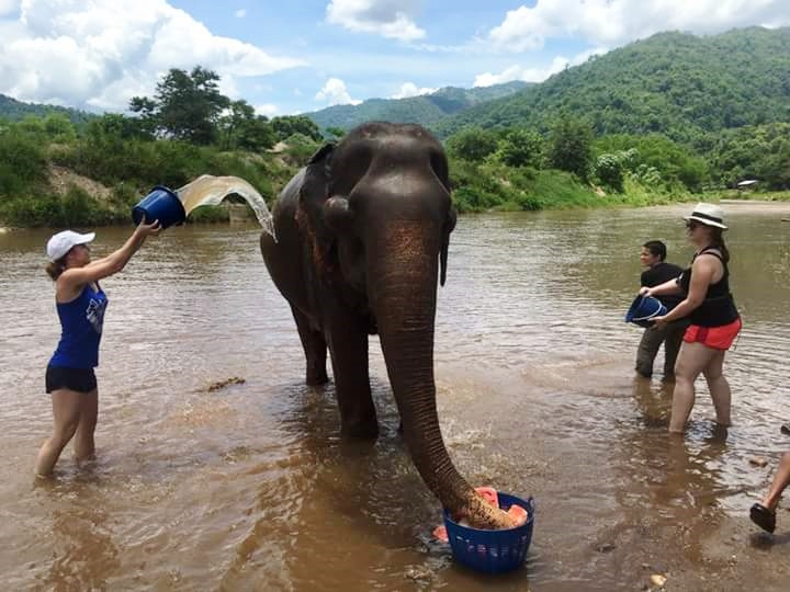NGOS in Southeast Asia: A Travel Blog