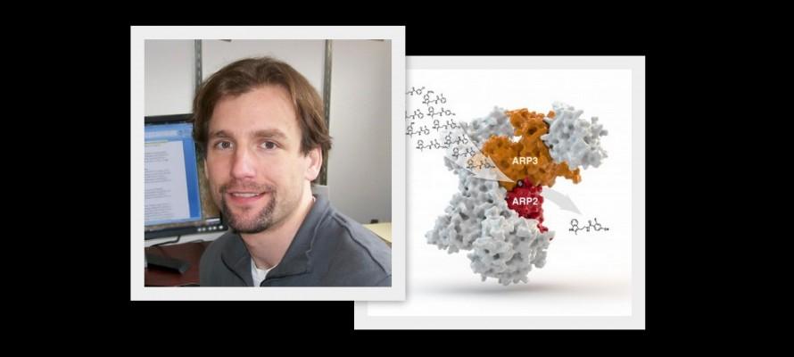 Bradley Nolen selected for MRF Richard T. Jones New Investigator Award