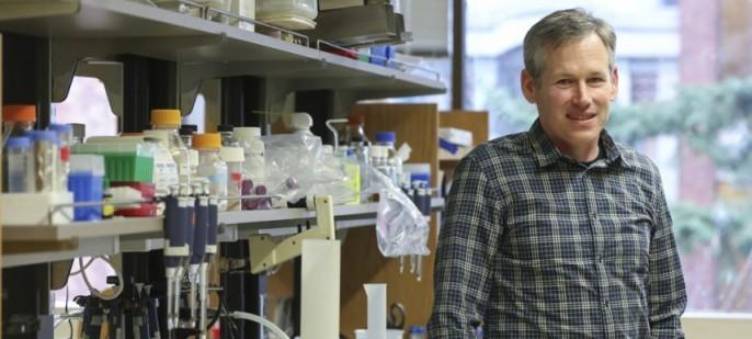 Biochemist Ken Prehoda's Research Sheds Light on Evolution