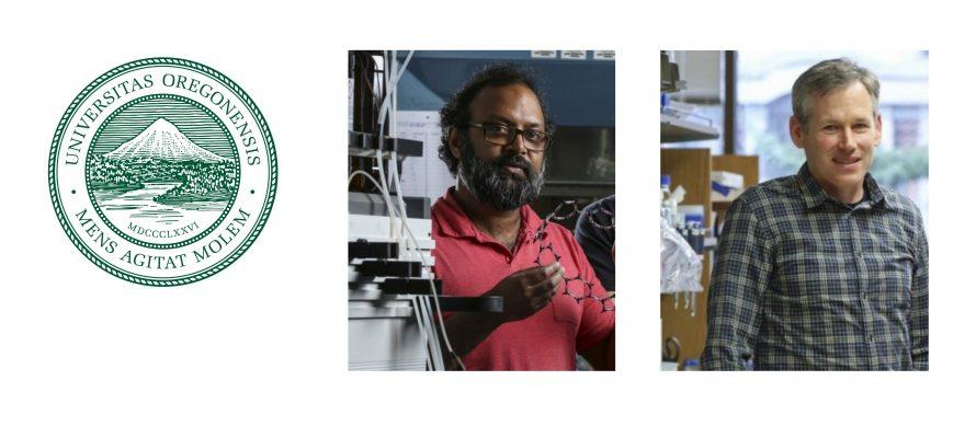 Ramesh Jasti and Ken Prehoda chosen for Faculty Excellence Awards