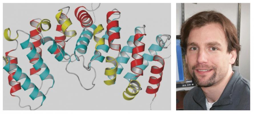 UO biochemist awarded $2.88 million to study the cytoskeleton