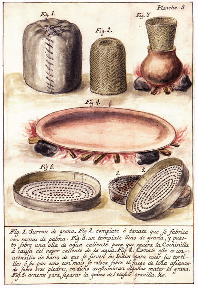 A bundles of cochineal; a basket for killing cochineal over a boiling vessel (tompiatl is a Nahuatl word); a comal, upon which some people kill the insects; and winnowing containers.