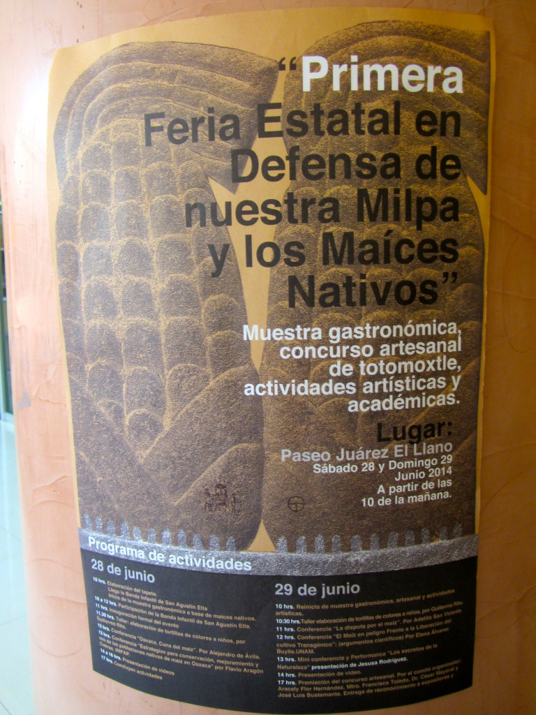 First Annual State Fair in Defense of Our Milpa and Our Native Maizes, June 2014 (photo of poster, S. Wood)