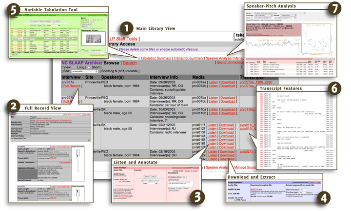 SLAAP screenshot collage (from Kendall 2007)
