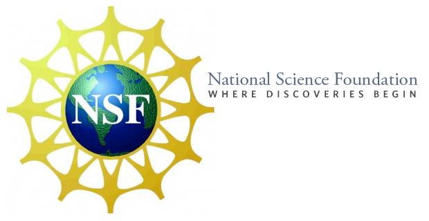 nsf dissertation writing grants