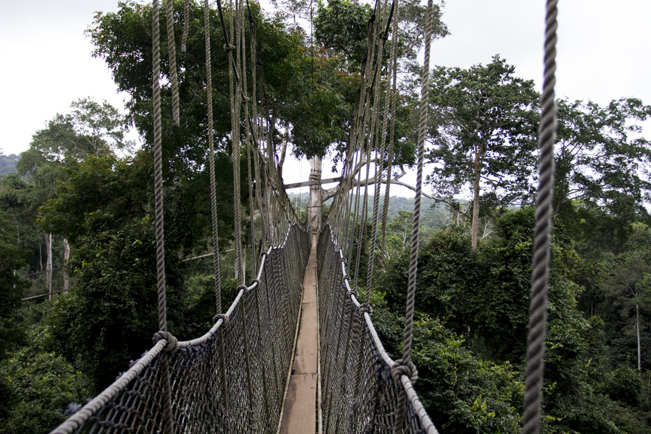 The Canopy Walk and Cape Coast Castle