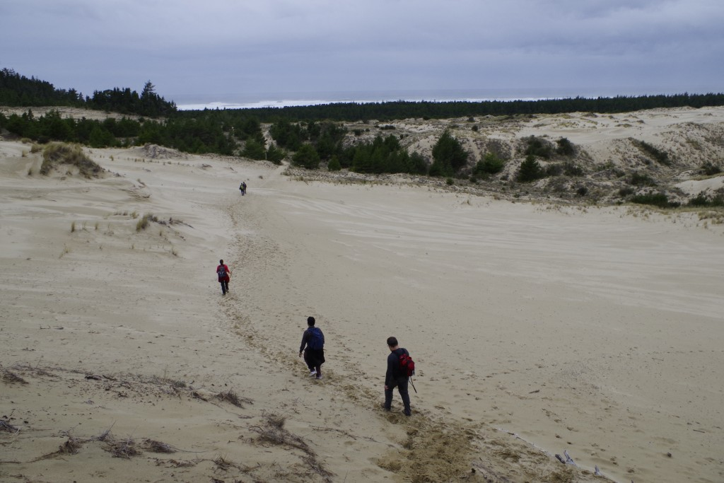Tahkenitch Dunes