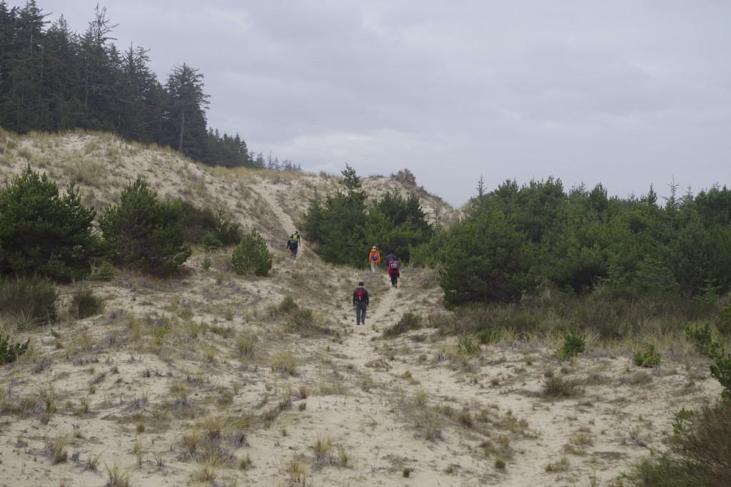Tahkenitch Dunes 3