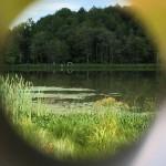 Lake Lens