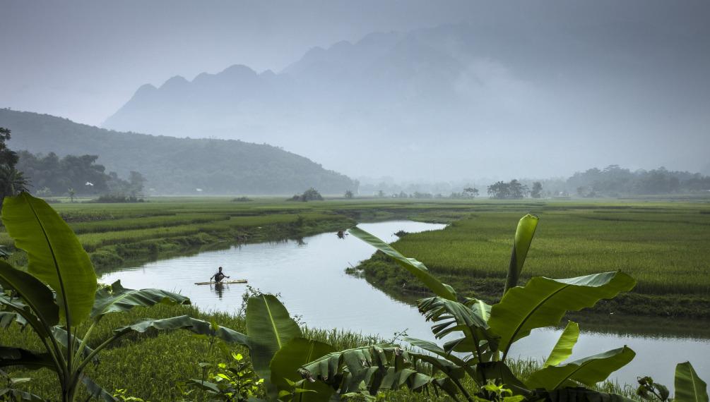 Southeast asian studies vietnam asian studies at the for Landscape design courses home study