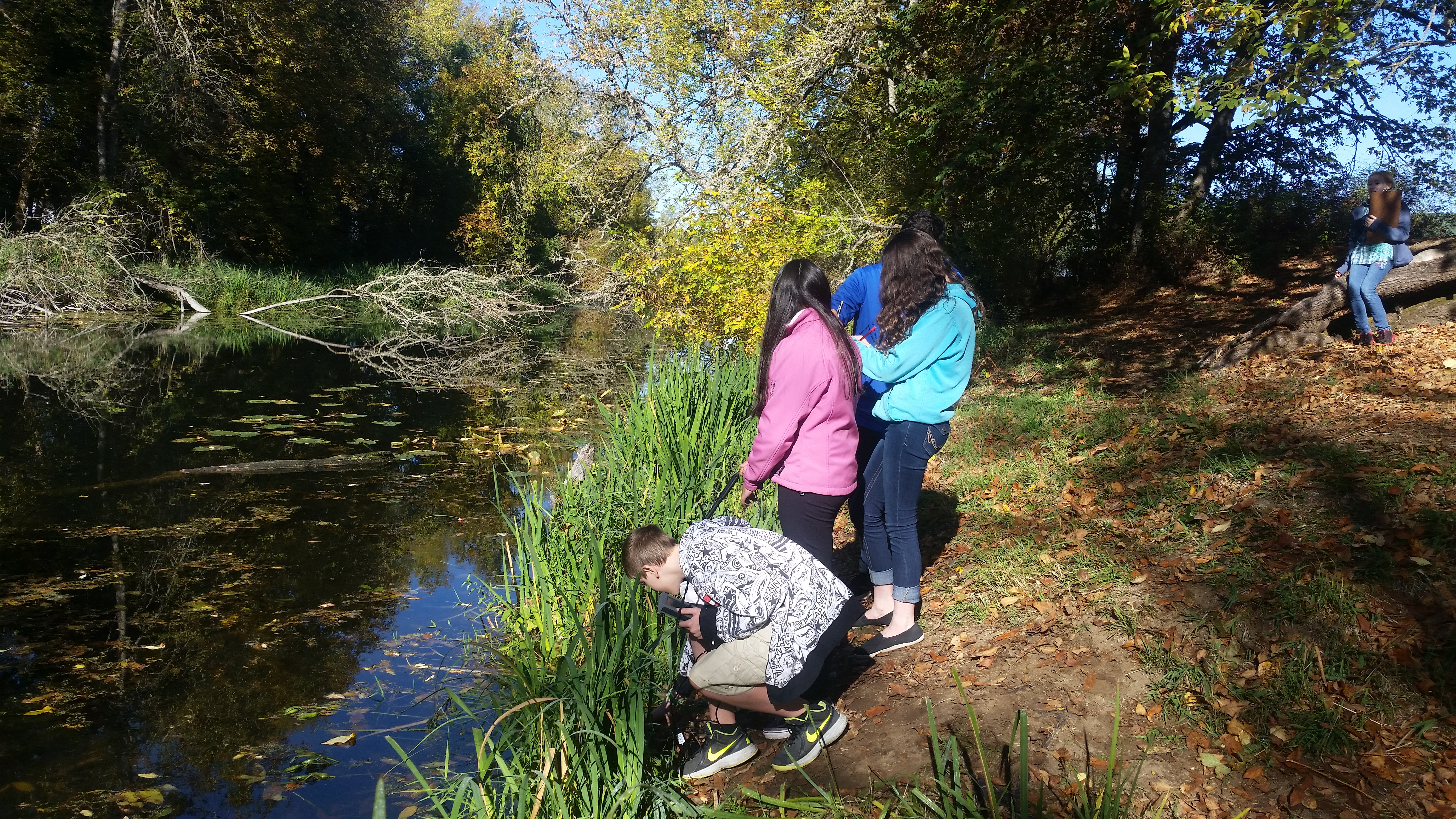 Jasper Slough Water Quality - Carrie Patterson's students