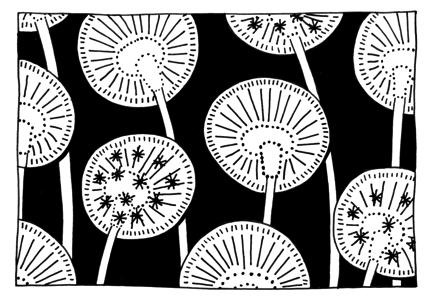 Dandelion image for Bill Flood article