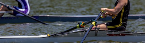 Interested in Rowing?