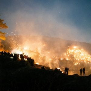 a crowd of people observing a forest fire
