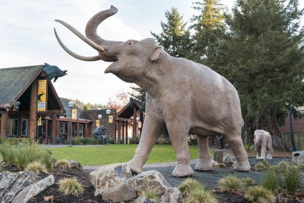 Mammoth sculptures in the museum' native plant courtyard