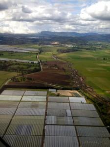 Aerial View: Bogota Greenhouse