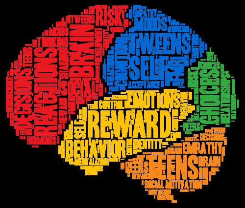 DSN_Brain