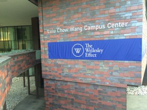 Wellesley Effect Banner