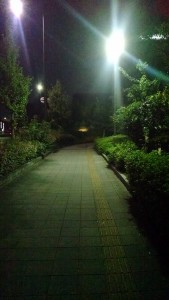 A nice, rainy night in Kyoto.