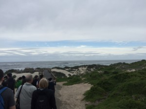 Seal Bay on Kangaroo Island with a day tour