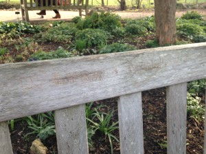 WE FOUND THE WILL AND LYRA BENCH!!