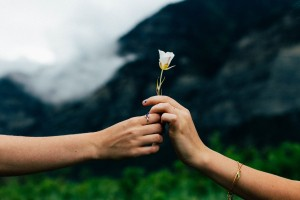 Flower_Handoff