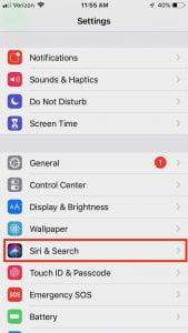 """In Settings, choose """"Siri & Search"""""""