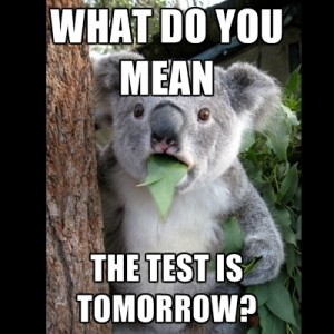 what-do-you-mean-the-test-is-tomorrow