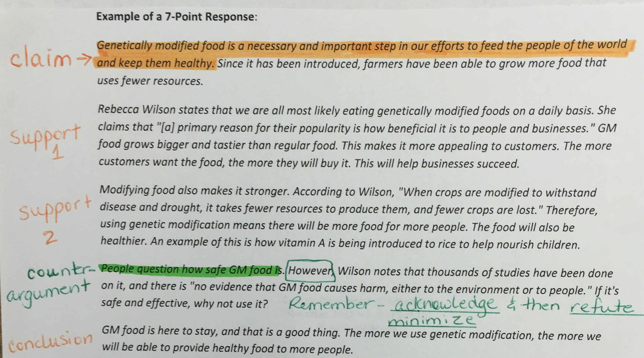 essay food healthy food essay essay healthy food and unhealthy  health risks by gm foods essay