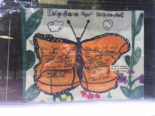 Monarch Butterfly PBL