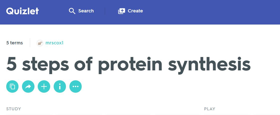 easy steps of protein sysnthesis Explain how the genetic code stored within dna determines the protein that will  form describe the process of transcription describe the process of translation.