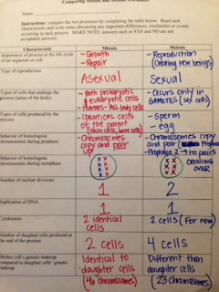 knoon | Mrs. Rudick's 7th Grade Science Class | Page 4
