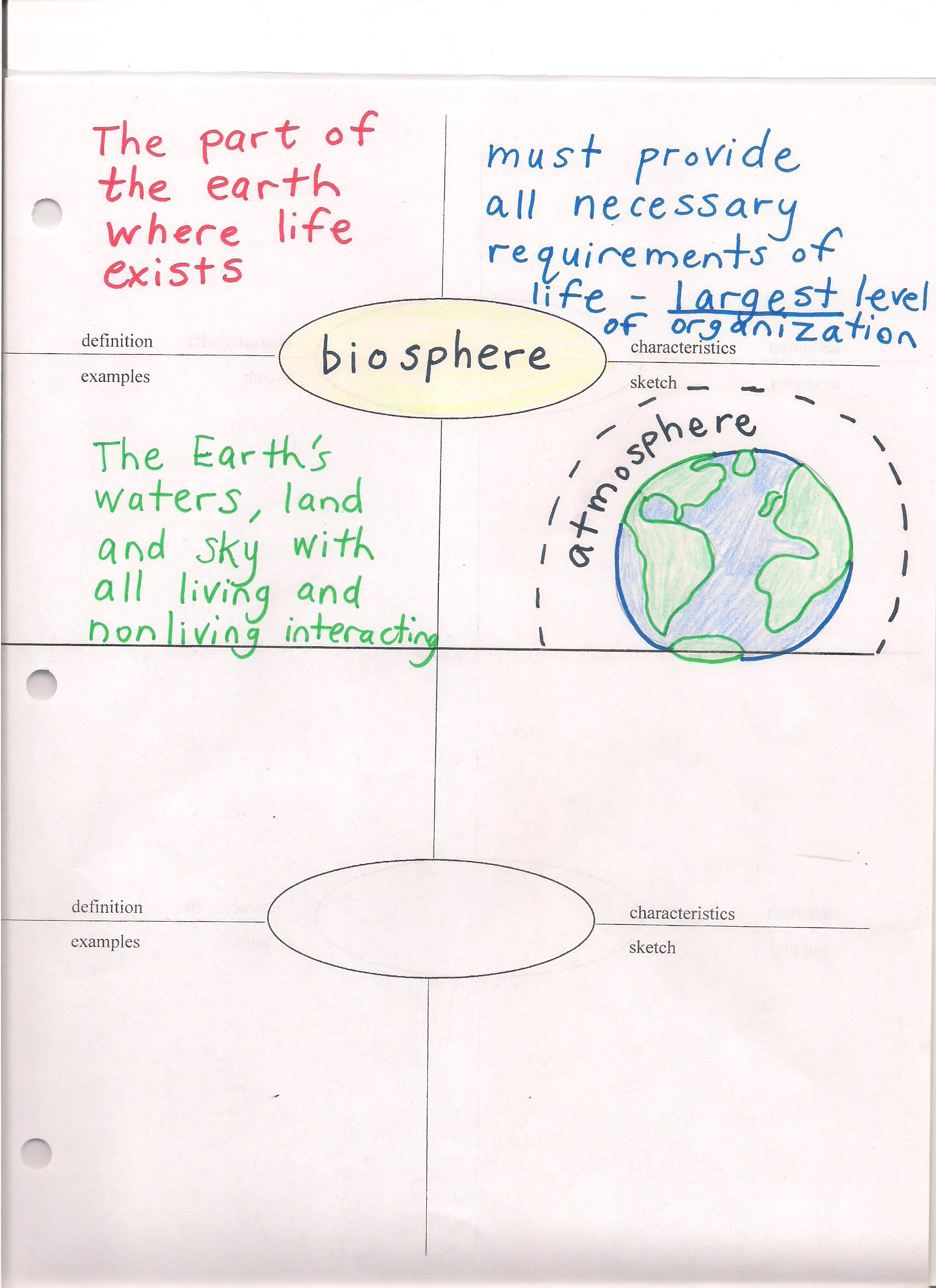 Braddocks business ecology levels of organization of life frayer ecology levels of organization of life frayer model ccuart Image collections