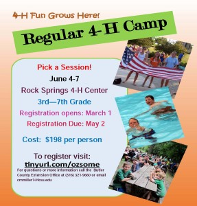 Regular Camp Flier 2