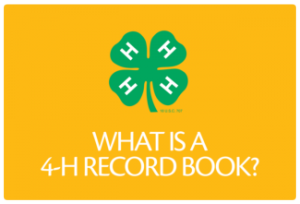 what is a record book