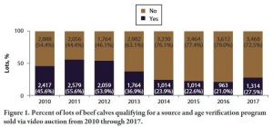 % of beef lots qualifying for age and source verification