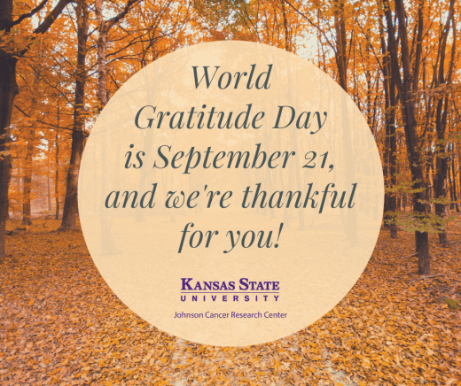 Image of fall leaves and message saying World Gratitude Day is Sept 21, and we're thankful for you!
