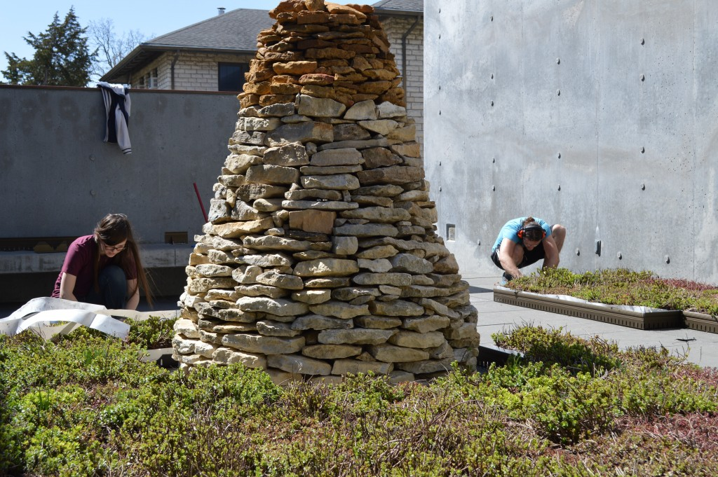 LA and Art students install green roof_krehbiel