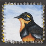 Jacqueline Bishop, Terra #276: Varied Thrush