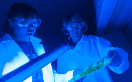 Two scientists examine samples in a lab