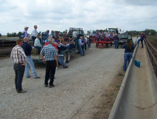 Large group at the feedlot field day