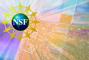 18 Rice students, 10 alums awarded NSF Graduate Research