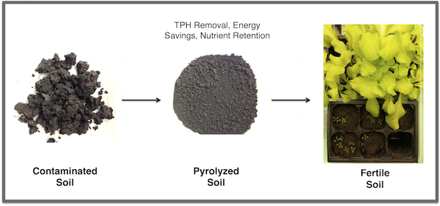 Rice University researchers pyrolyzed oil-contaminated soil to reduce total petroleum hydrocarbons (TPH) below federal standards, while leaving beneficial carbons in the soil. The lab grew lettuce in samples of reclaimed soil to test its viability.