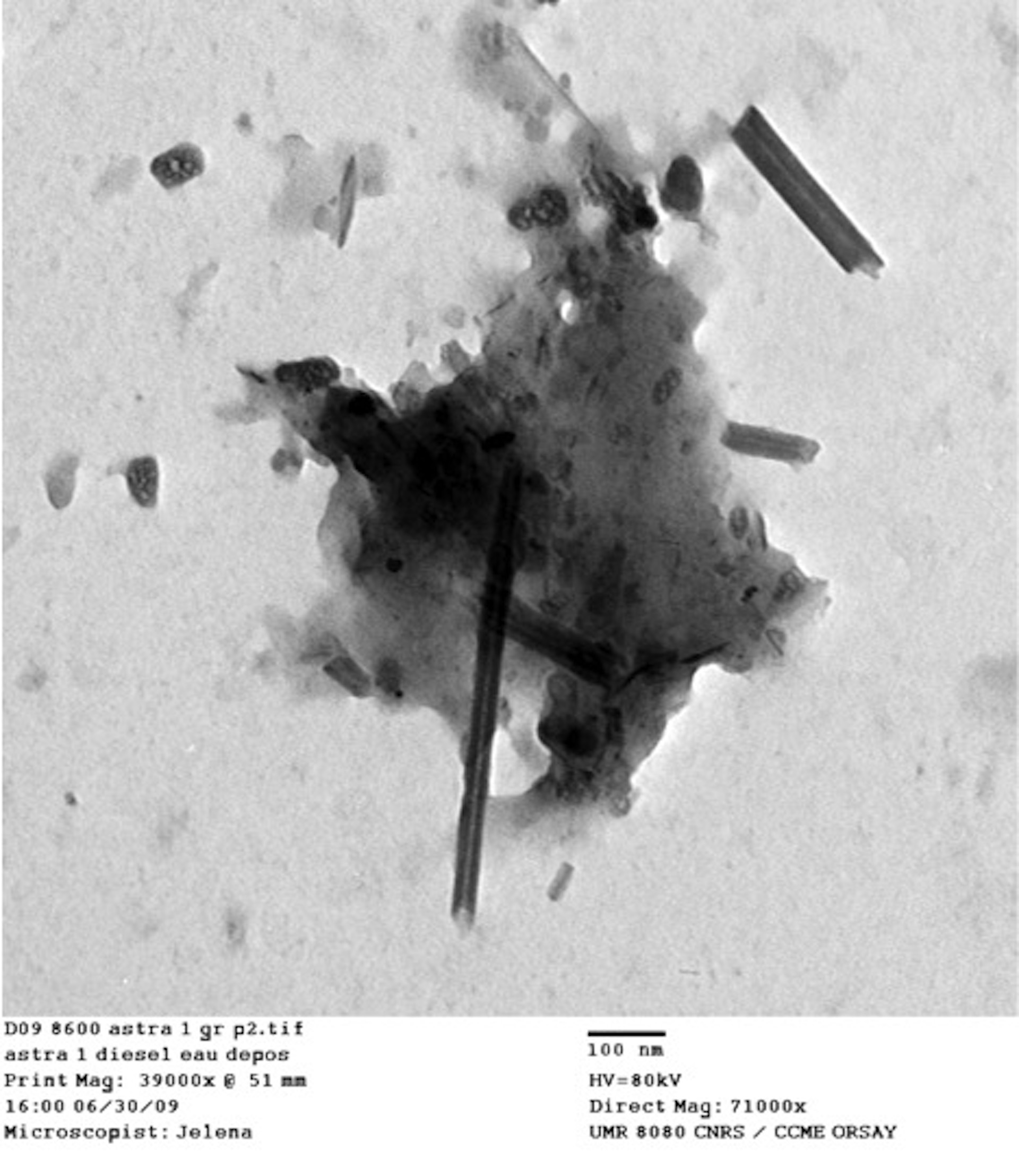 samples of carbon nanotubes