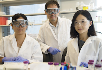 Rice University researchers (from left) Lucia Wu, David Zhang and J. Sherry Wang have developed a continuously tunable method to quantify biomarkers in DNA and RNA. Finding biomarkers is important for the detection of diseases and the design of therapies.