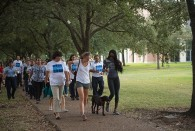 Members of the Rice community joined members of the administration for a walk along Loop Road and Alumni Drive as part of the Week of Wellness. […]