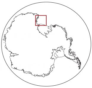 study area in Ross Sea